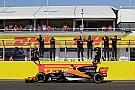 McLaren: Macaristan GP, Alonso'nun kararını etkilemeyecek