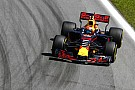 Verstappen's attitude his star quality in 2017 - Red Bull