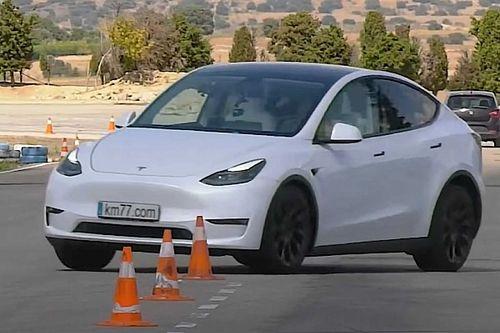 Nem fogott ki a Tesla Model Y-on a jávorszarvas-teszt sem