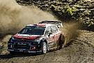 WRC El jefe de Citroen insiste en que el asiento de Meeke no peligra