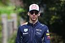 Formel 1 2017: Pierre Gasly hat keine Angst vor Hitze-Debüt in Sepang
