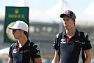 """Webber: Programa de pilotos da Red Bull """"amoleceu"""""""