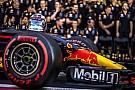 Forma-1 Ma reggel mutatják be a Red Bull legújabb F1-es autóját: jön az RB14