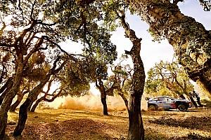 WRC Fotostrecke Top 20: Die schönsten Fotos der WRC-Rallye Sardinien