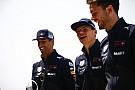Rosberg: Verstappen túl sokszor szúrja el, Ricciardo előz a legjobban