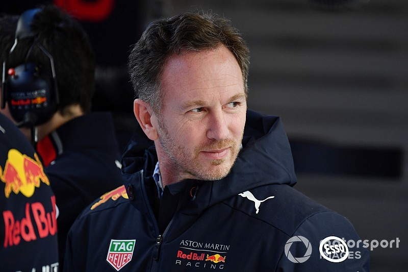 Horner over jong Red Bull-duo: