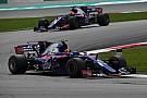 Формула 1 Підсумки сезону Ф1: Toro Rosso - кардинальні зміни