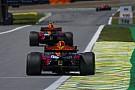 Red Bull: modo conservador em motor no Brasil atrapalhou