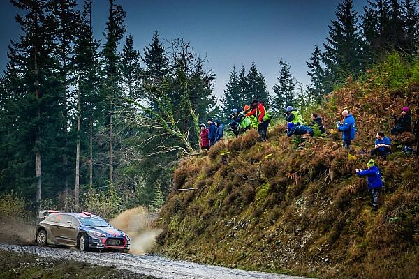 WRC Noticias de última hora Sordo y Paddon compartirán el tercer Hyundai en 2018