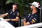 Ricciardo: Red-Bull-Duell wird nicht eskalieren wie Hamilton gegen Rosberg