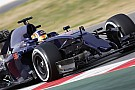 Toro Rosso planning 'B-spec' revamp