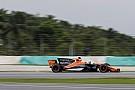A McLaren és a Honda is Vandoorne-t méltatja Malajziában