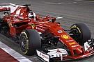 Sebastian Vettel bejubelt