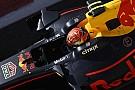Max Verstappen: Keine Crash-Diät trotz Halo-Gewicht