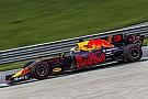 Formel 1 2017: Red Bull Racing schließt eine Stallorder aus