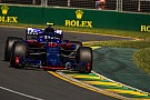 Формула 1 Гаслі: Toro Rosso має в запасі цікаві новинки