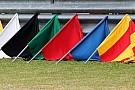 Судья FIA предложил отказаться от синих флагов в Ф1