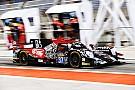 WEC DC Racing turunkan kuartet pembalap Malaysia di WEC