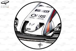 Williams FW40 old nose