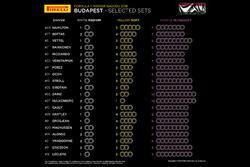 Вибір шин на Гран Прі Угорщини