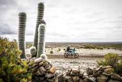 #100 KTM: Lyndon Poskitt