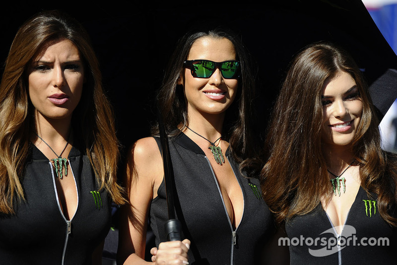 Lovely Monster Energy girls