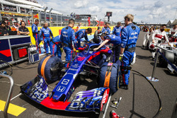 Brendon Hartley, Toro Rosso STR13, on the grid