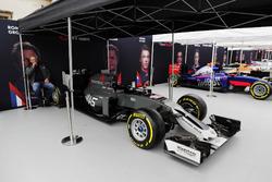 Haas F1 Team, Scuderia Toro Rosso, McLaren