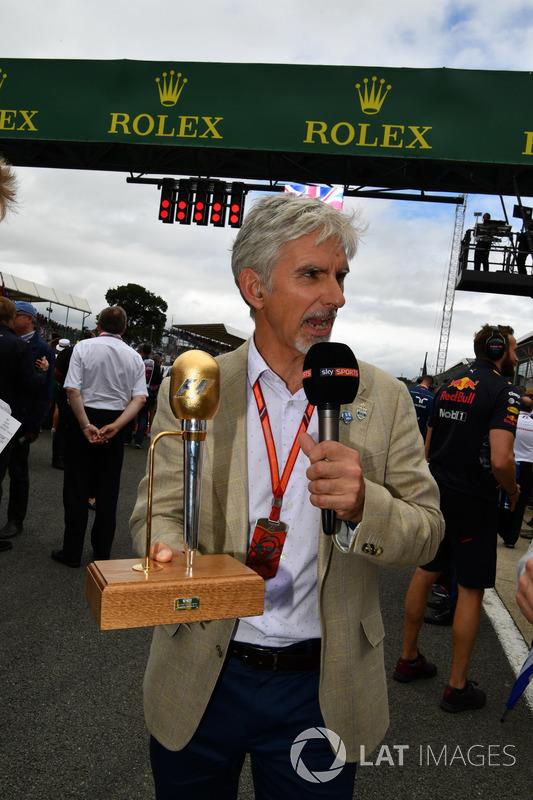 Damon Hill, Sky Sports F1