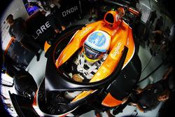 Fernando Alonso, McLaren with halo