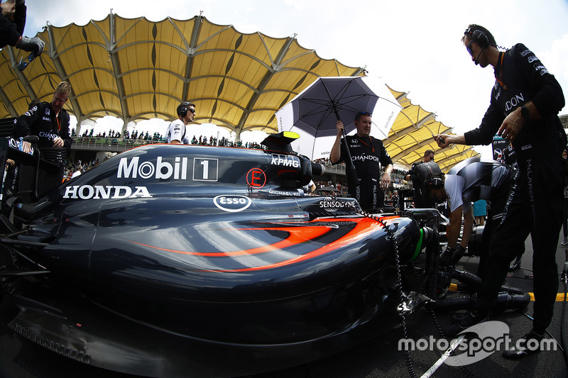 The team at work on the car of Jenson Button, McLaren MP4-31 on the grid