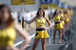 La grid girl di Ben Hingeley, Hitech Bullfrog GP Dallara F317 - Mercedes-Benz