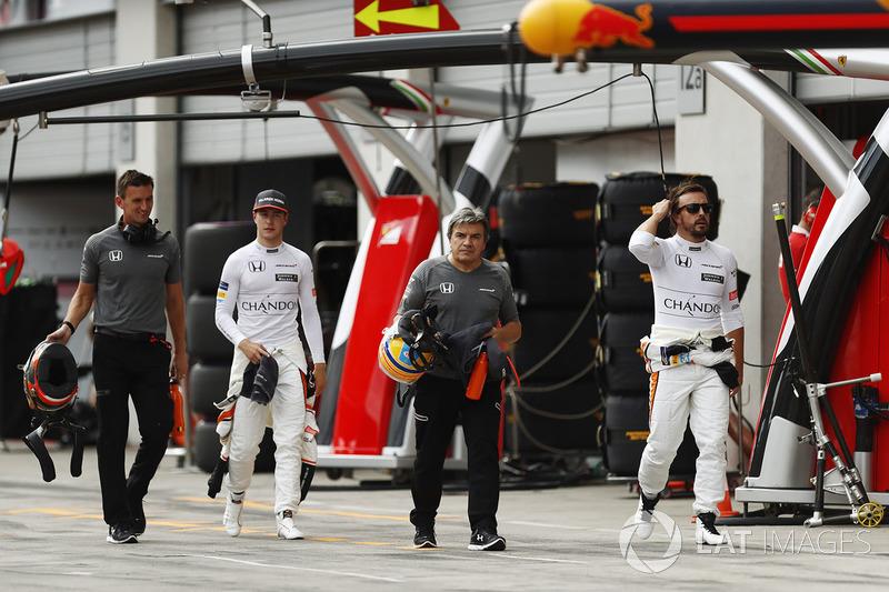 Стоффель Вандорн, McLaren, Фернандо Алонсо, McLaren