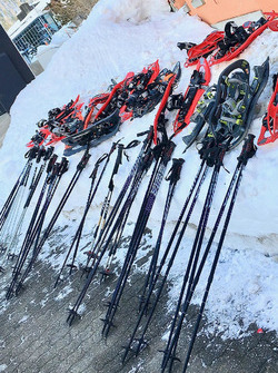 Skis and poles for training