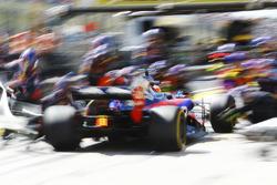 Daniil Kvyat, Scuderia Toro Rosso STR12, pit stop action