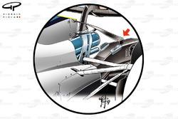 Нижнє Т-крило Williams FW40
