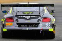 Bentley Team