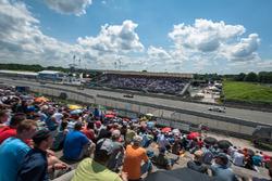 Zuschaueratmosphäre; Martin Tomczyk, BMW Team Schnitzer, BMW M4 DTM; António Félix da Costa, BMW Tea