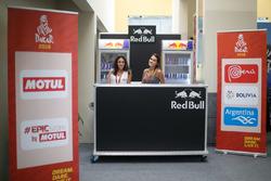 De charmantes Red Bull Girls