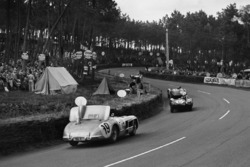 #6 Jaguar D-type: Mike Hawthorn, Ivor Bueb; #19 Mercedes Benz 300S: Juan Manuel Fangio, Stirling Moss