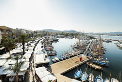 The market and marina in Sanary sur Mer