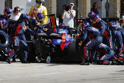 Brendon Hartley, Scuderia Toro Rosso STR12, pitstop