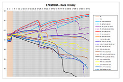 Brazilian GP - race history