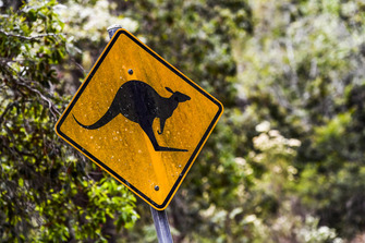 Rally Australia atmosphere - kangaroo sign