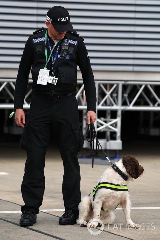 Поліцейський із собакою