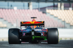 Max Verstappen, Red Bull Racing RB13 with flow-vis paint