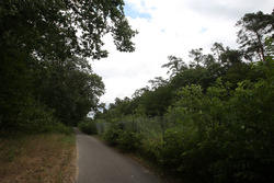 A cycle path runs beside the route of the old circuit