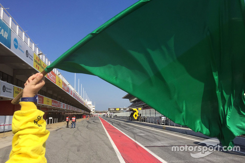 Grüne Flagge