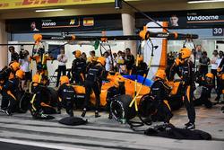 Fernando Alonso, McLaren MCL33, s'arrête au stand