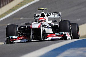 Formula 1 Sauber Brazilian GP Friday practice report